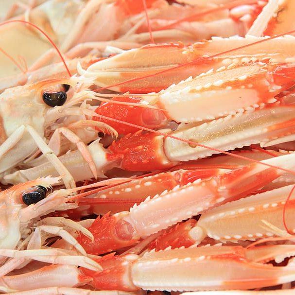 italy-sardinia-alghero-seafood